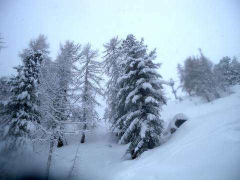 Buon Natale da Snowpassion.it