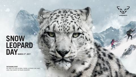 Snow Leopard Day 2017